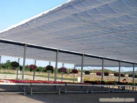 遮荫棚-上海遮荫棚搭建-上海温室工程-上海温室大棚搭建