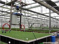 自走式灌溉系统-上海温室大棚灌溉系统-上海温室大棚搭建-上海温室工程