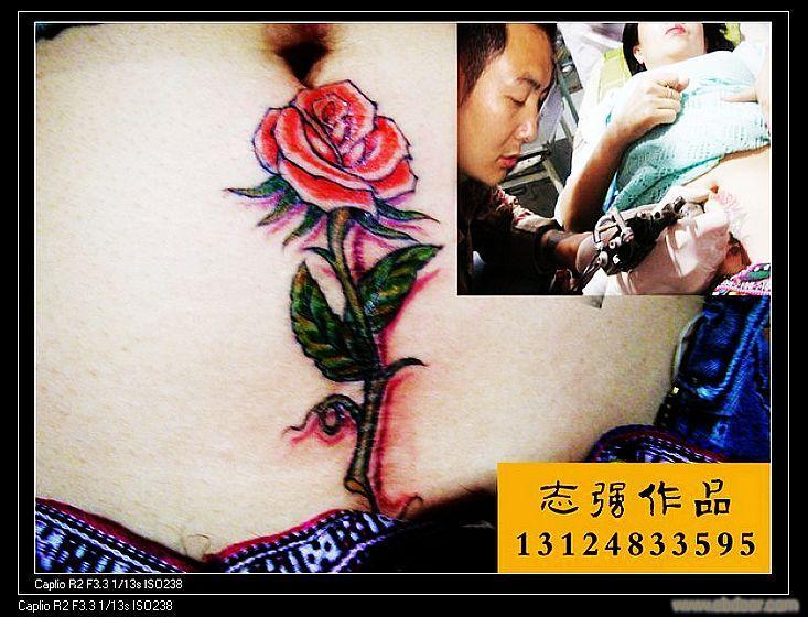 剖腹产纹身图片,剖腹产疤痕纹身,疤痕遮盖纹身