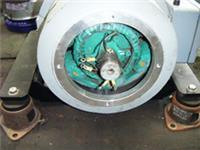 专业/维修电动机