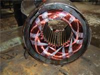 专业维修电动机