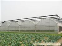 温室大棚/上海温室大棚