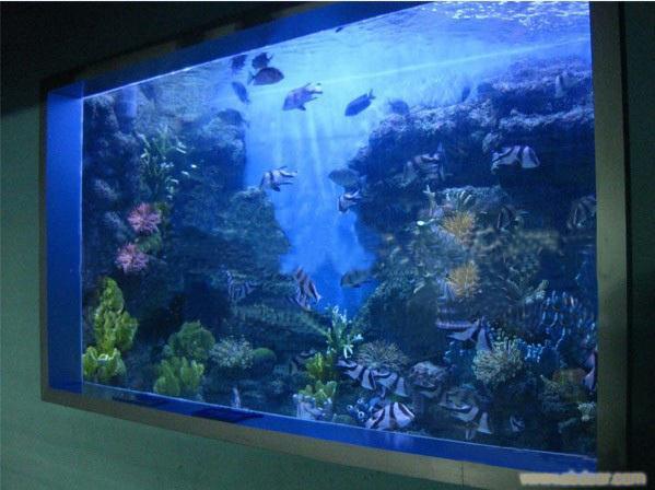 鱼缸定做-亚克力鱼缸-大型亚克力鱼缸厂家