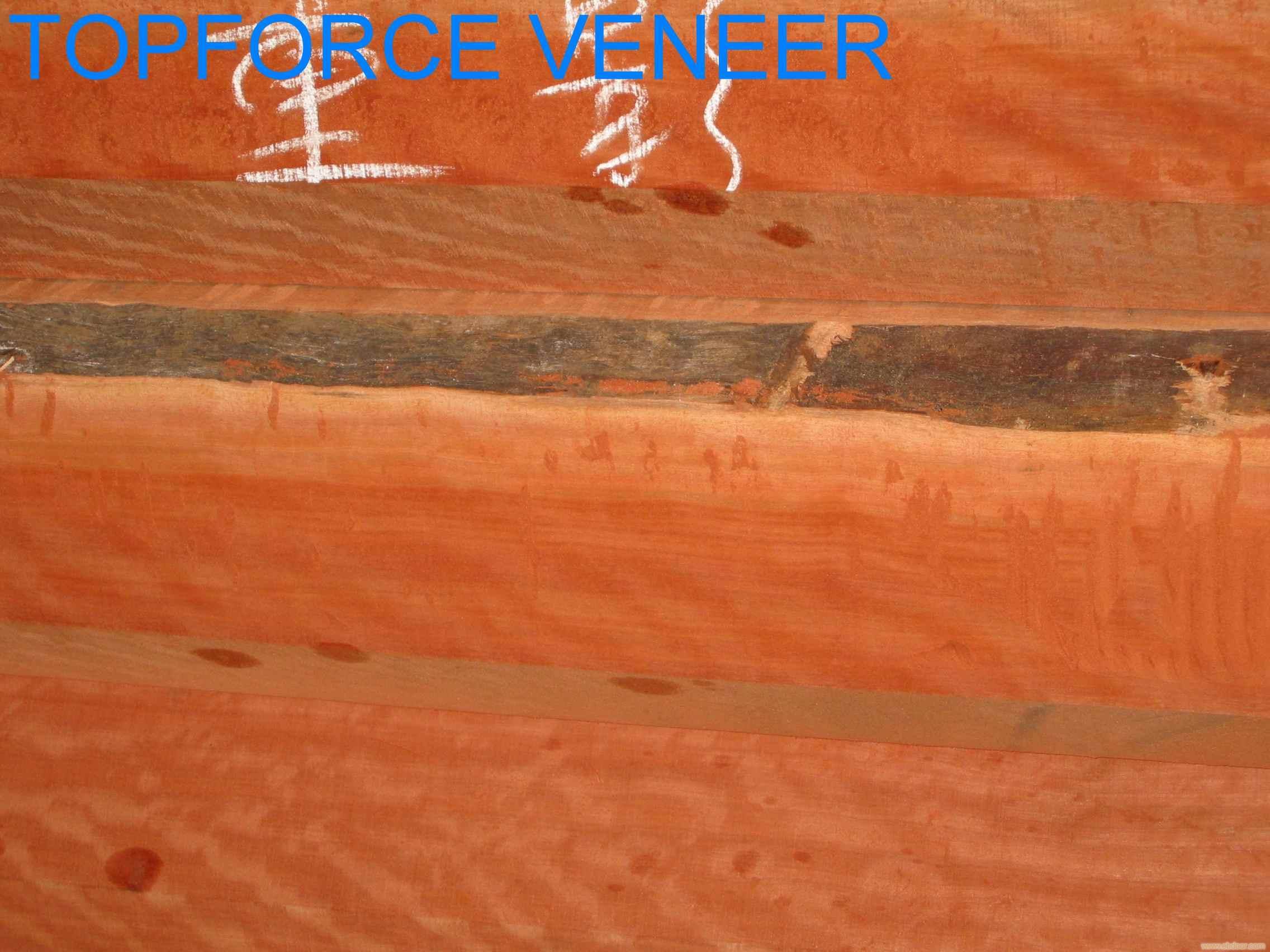 上海麦格利方块影 Makore Block Figure,Makore Square Figure,Makore Fiddle Back Figure,Heavy Makore Bl