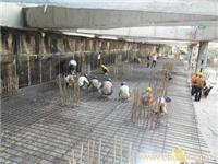 上海防水公司-防水堵漏公司-云风防水工程公司