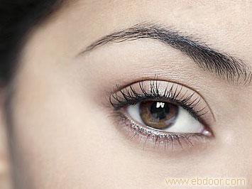 绣眼线,上海绣眼线