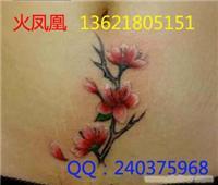 上海纹身-盖疤纹身