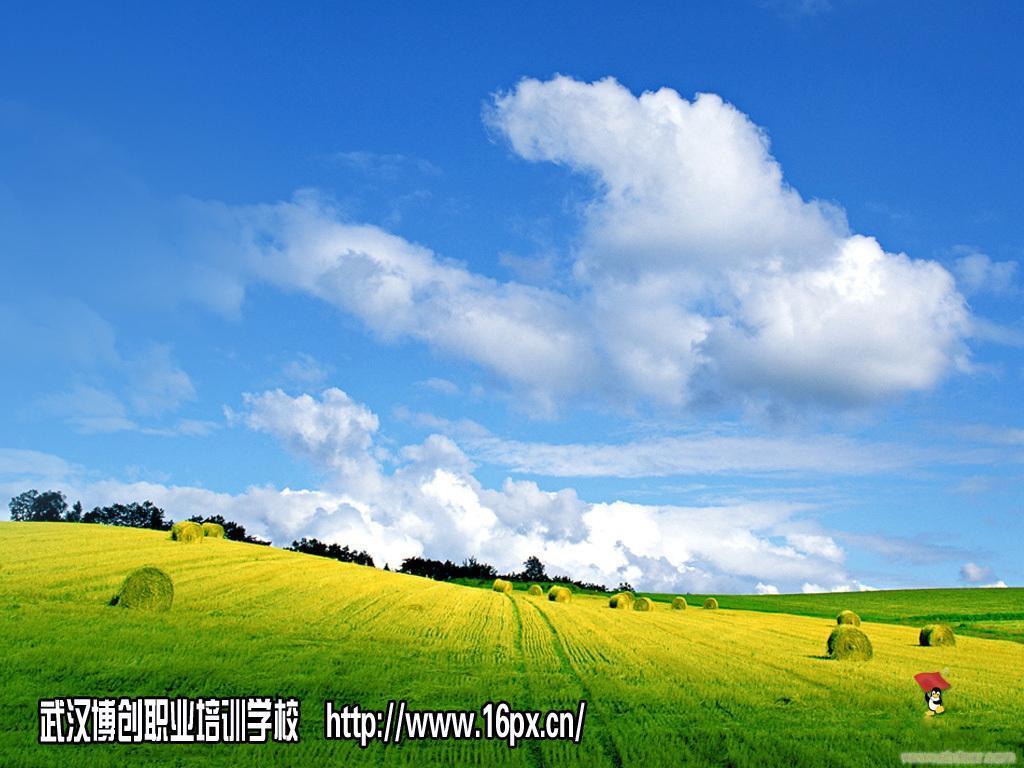 武汉博创培训学校预算造价实操班全年武昌,汉口多校区循环高清图片