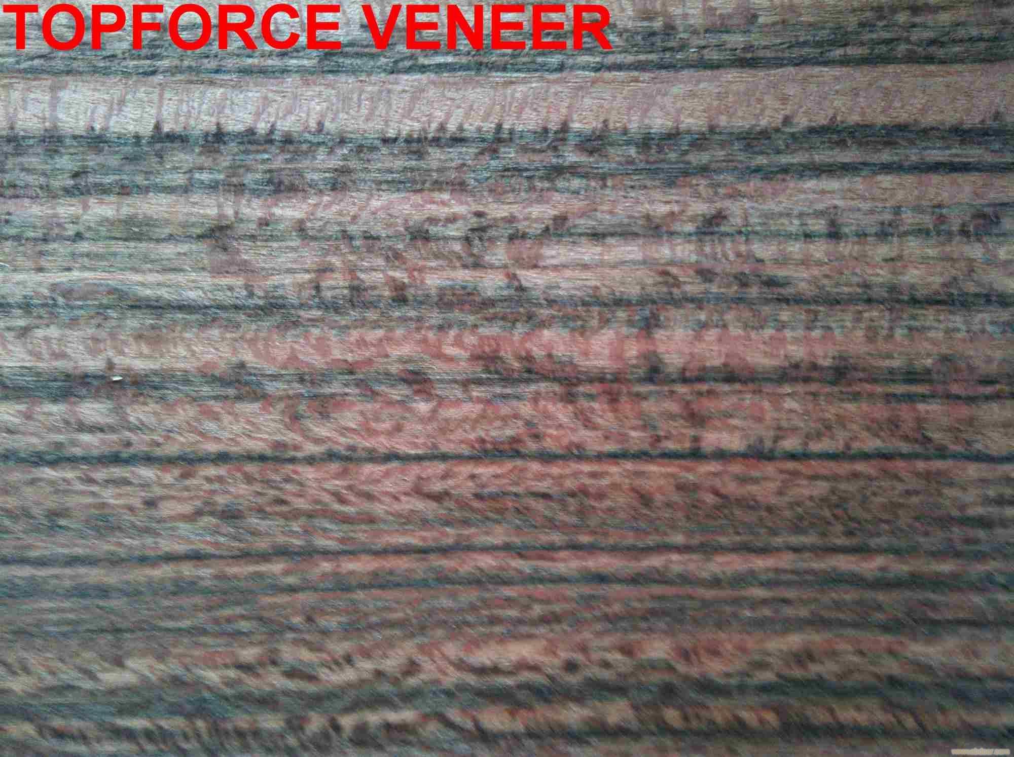 斑纹漆木,老虎木,老虎木木方,老虎木木皮,老虎木木材,老虎木家具料,老虎木家具,老虎木地板,老虎木地板料,虎