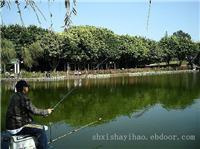 上海崇明度假村-崇明生态农业旅游