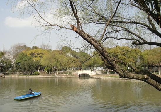 崇明岛旅游攻略        崇明岛旅游景点推荐     东平国家森林公园