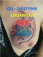 找火凤凰-上海专业纹身室的上海纹身-莲纹身价格,图片