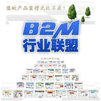 B2M行业化联盟推广