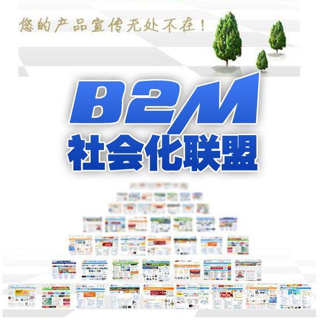 B2M社会化联盟推广