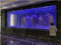上海市亚克力鱼缸养护|清洗|包月养护|低价鱼缸养护