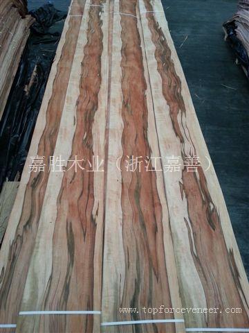 南美印第安苹果木 Tineo 原木 木皮 板材