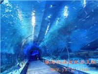 广州亚克力鱼缸|广州大型亚克力鱼缸|亚克力鱼缸保养