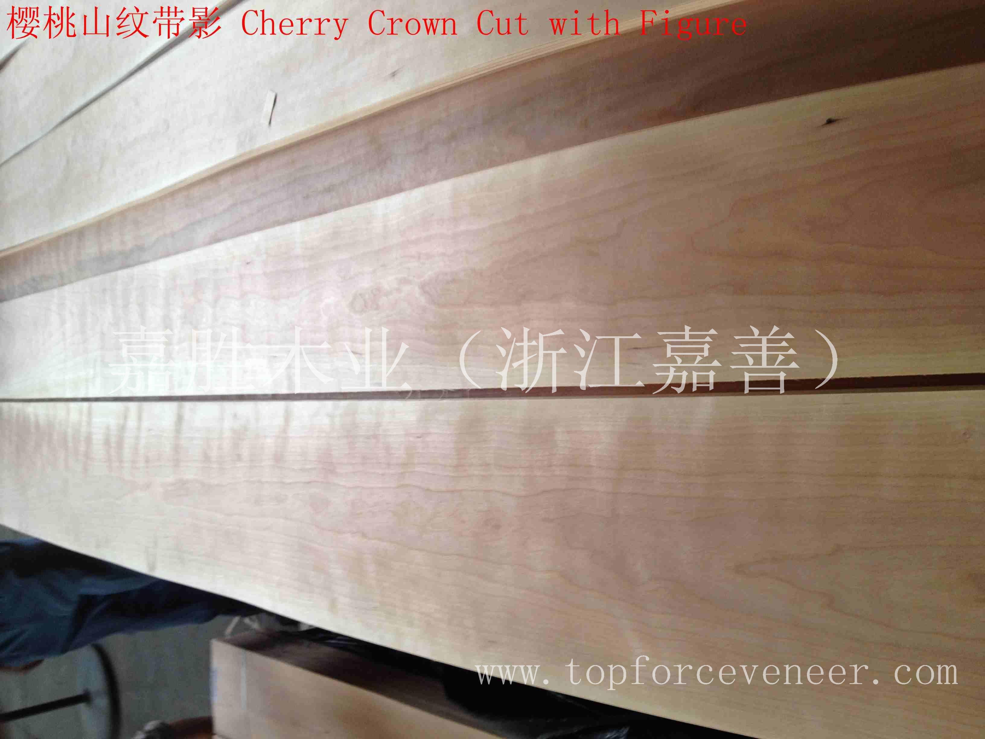 上海美国樱桃木皮-ShangHai American Black Cherry Veneer 嘉胜木业(浙江嘉善) TOPFORCE VENEER,Tobacco Sp