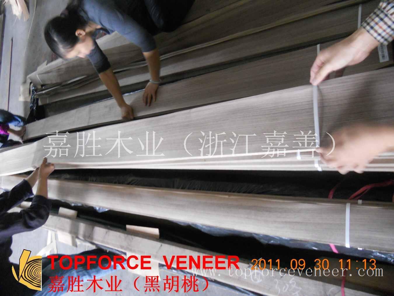 浙江嘉善木皮市场 JiaShan Veneer Market 嘉善东方兴业城