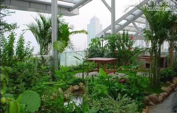 空中花园、屋顶花园设计施工