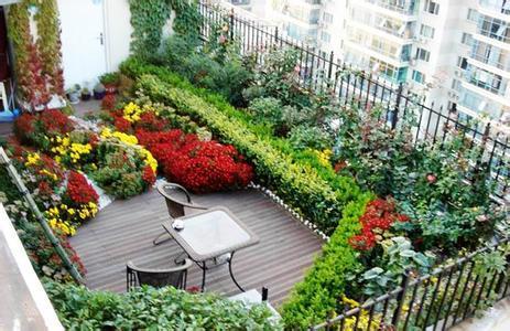 杭州屋顶LOVEBET爱博体育官网设计公司,杭州屋顶花园施工,杭州屋顶花园植物配置
