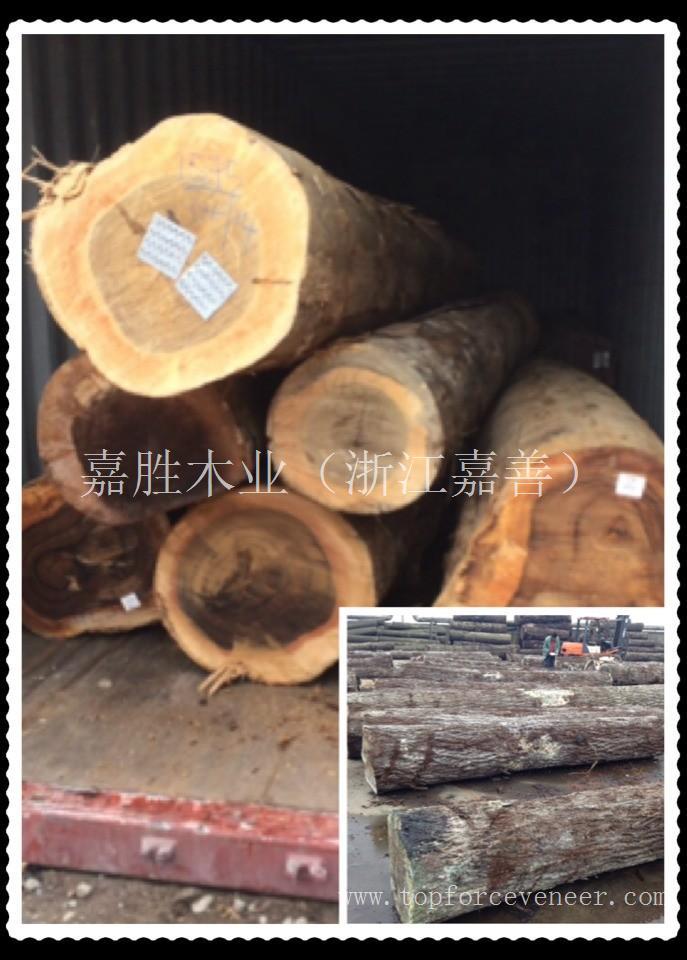 非洲胡桃原木 African Walnut Logs