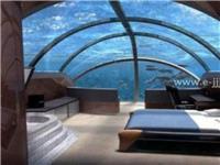 亚克力水族工程制作-上海尊海亚克力鱼缸厂