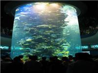 大型亚克力鱼缸制作-北京亚克力鱼缸生产制造