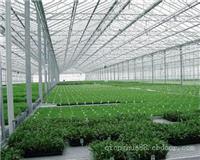 智能玻璃温室_上海玻璃温室