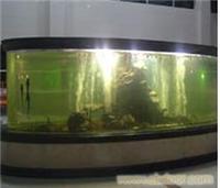 上海亚克力鱼缸