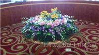 浦东办公室花卉租赁_绿色植物租赁上海茵之梦绿化租赁花卉公司