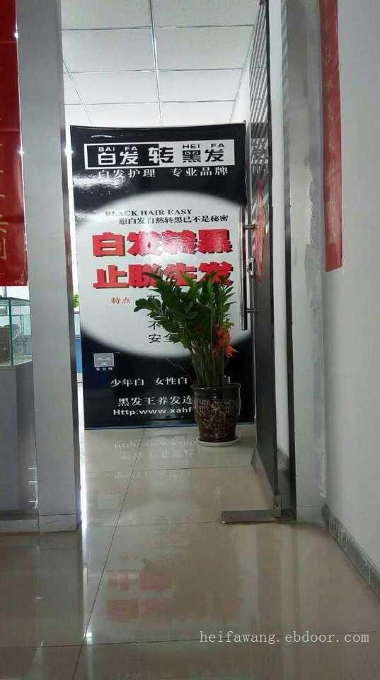黑发王太原漪汾加盟店