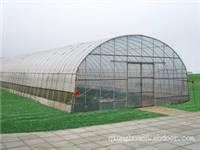 温室大棚_加强型单栋塑料大棚GP-832