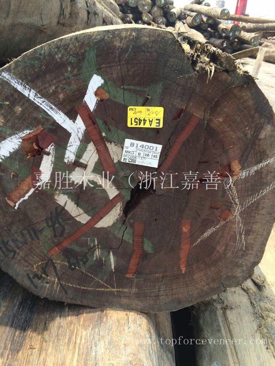 亚洲东南亚马来西亚东马红心漆原木 Rengas Logs with Red Heart
