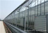 智能玻璃温室_Venlo型玻璃温室