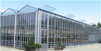Venlo型玻璃温室_玻璃温室价格