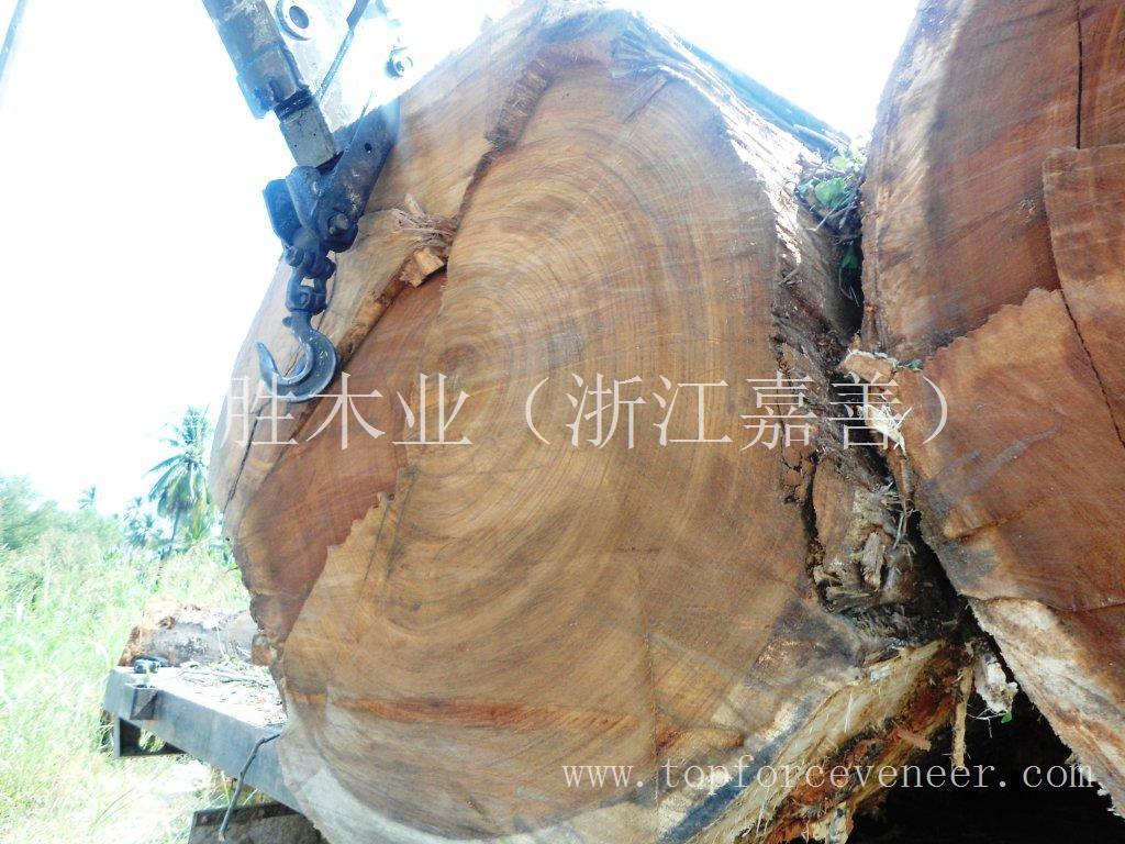 纯原木大桌板与自然边