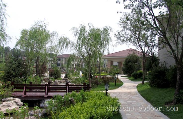 青浦别墅绿化设计