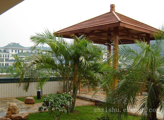 上海屋顶花园