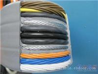 TVVBG带钢丝电梯扁电缆-4