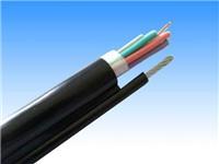 起重机卷筒电缆-1