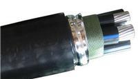 铝合金电缆-1