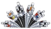 铝合金电缆-3