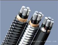 铝合金电缆-6