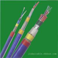 防爆电缆-1