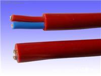 硅橡胶电缆-5