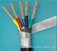 铠装电缆-5