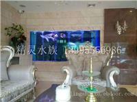 武汉别墅鱼缸设计