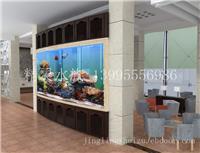 家居鱼缸设计