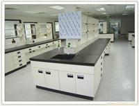 中央水斗台 实验室设备 实验室家具